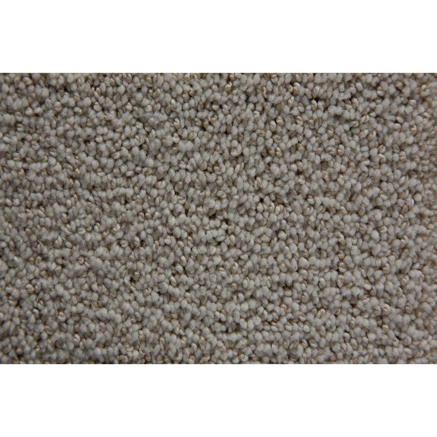 STAINMASTER TruSoft Mixology Celestial Berber/Loop Carpet Sample