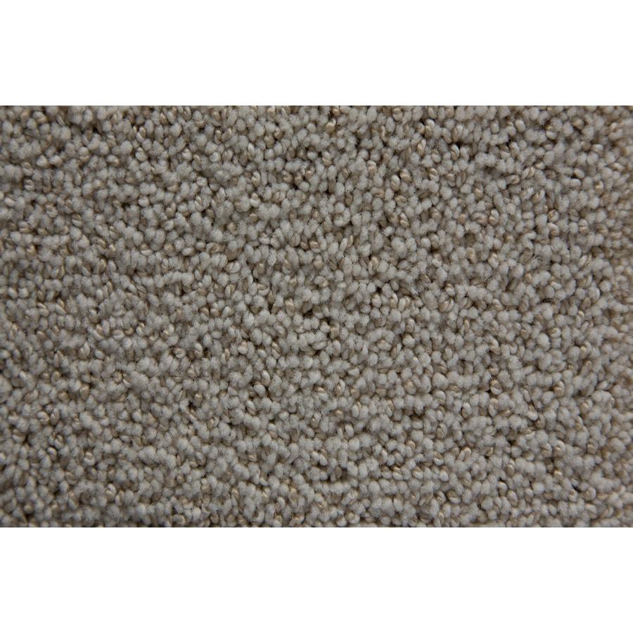 STAINMASTER TruSoft Mixology Celestial Carpet Sample