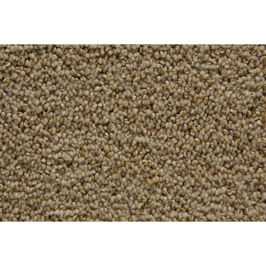 STAINMASTER Mixology TruSoft Thatch Cut and Loop Carpet Sample