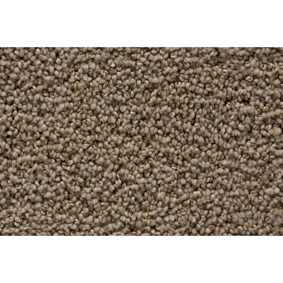 STAINMASTER Mixology TruSoft Lantana Cut and Loop Carpet Sample