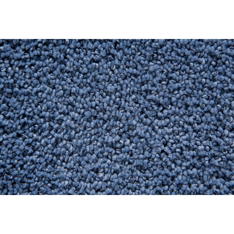 STAINMASTER Mixology TruSoft Ocean Cut and Loop Carpet Sample