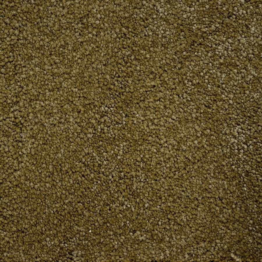 STAINMASTER Purebred Petprotect Futurity Plus Carpet Sample
