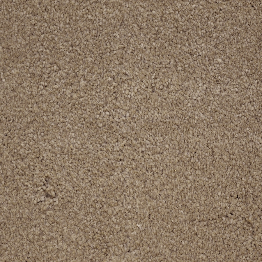 STAINMASTER PetProtect Purebred Premium Plush Carpet Sample