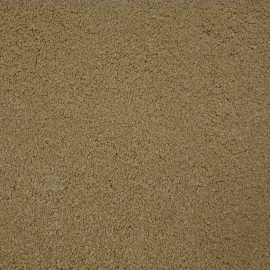 STAINMASTER Purebred Petprotect National Plus Carpet Sample