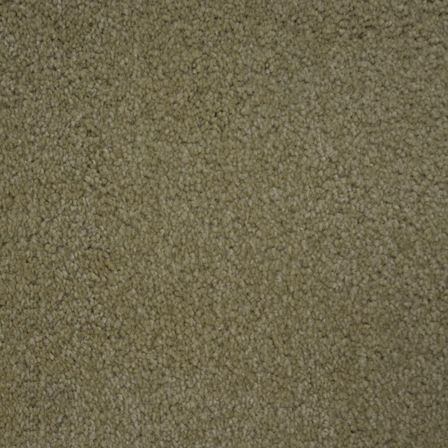 STAINMASTER PetProtect Purebred Secretary Carpet Sample