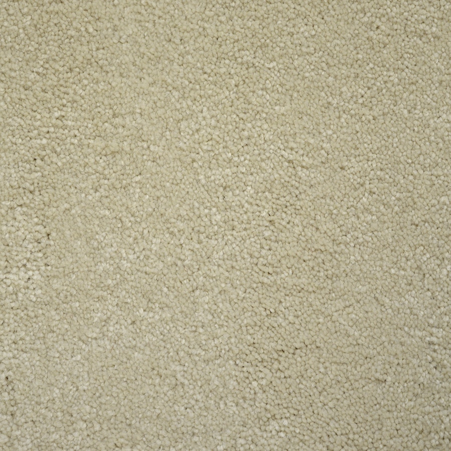 STAINMASTER PetProtect Purebred Class Plush Carpet Sample