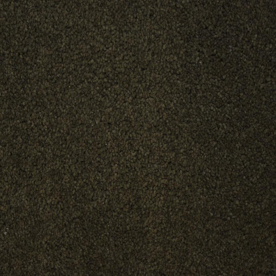 STAINMASTER PetProtect Purebred Breed Plush Carpet Sample