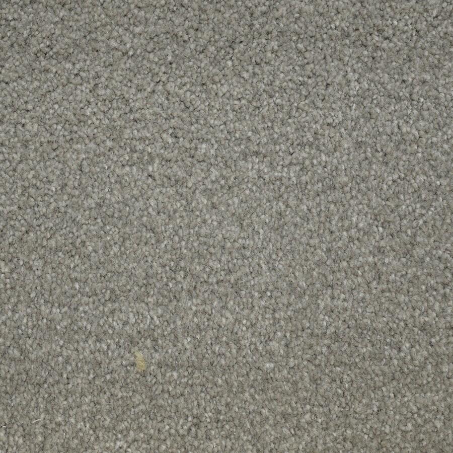 STAINMASTER Purebred Petprotect Canine Plus Carpet Sample