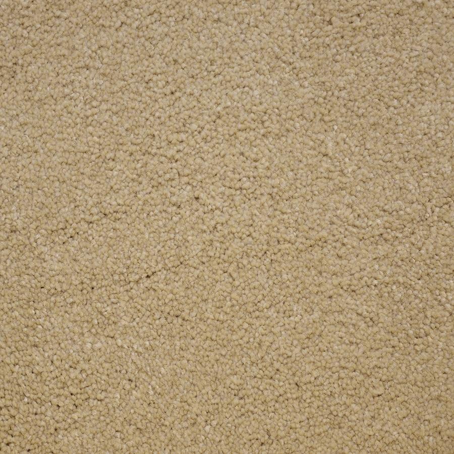 STAINMASTER Pedigree PetProtect Winner Plus Carpet Sample