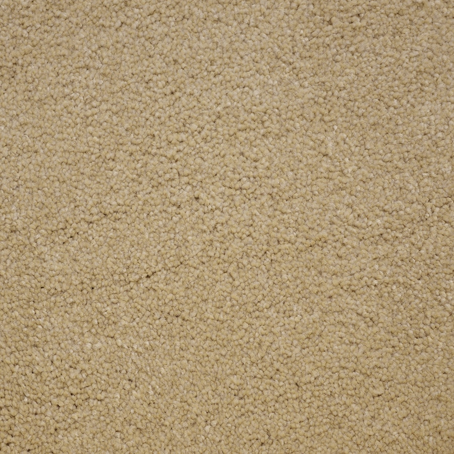 STAINMASTER PetProtect Pedigree Winner Carpet Sample