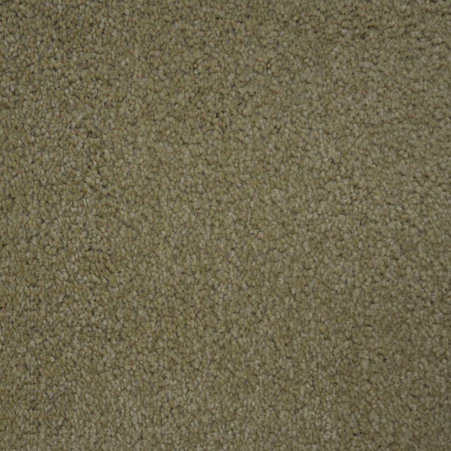STAINMASTER PetProtect Pedigree Secretary Carpet Sample