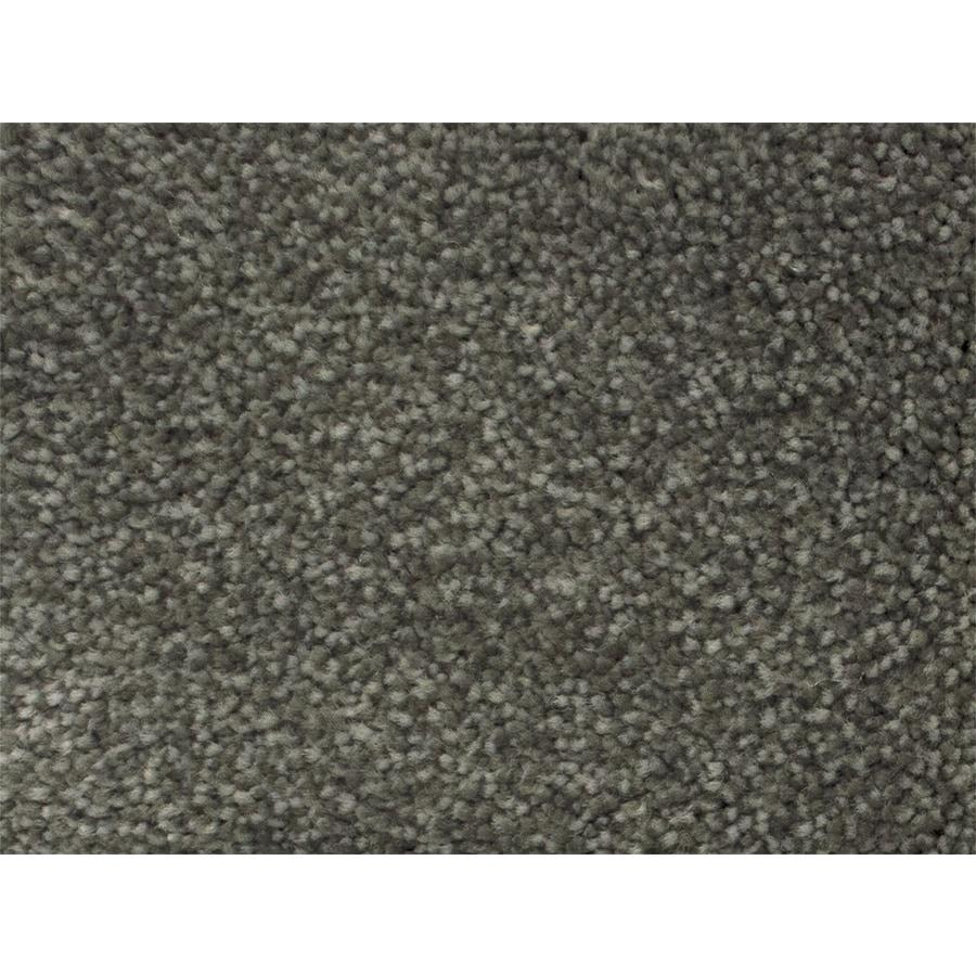 STAINMASTER PetProtect Pedigree Campaign Carpet Sample