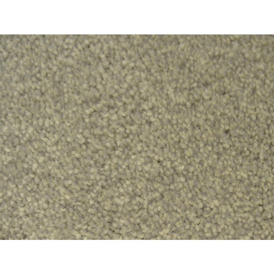 STAINMASTER PetProtect Pedigree Kennel Plush Carpet Sample
