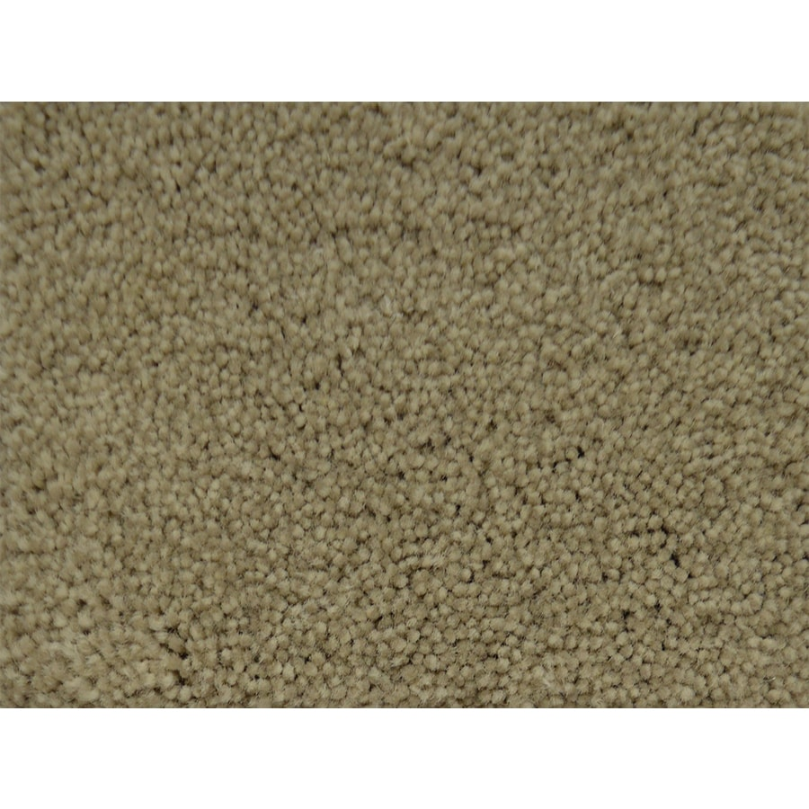 STAINMASTER Best In Show PetProtect Premium Plus Carpet Sample