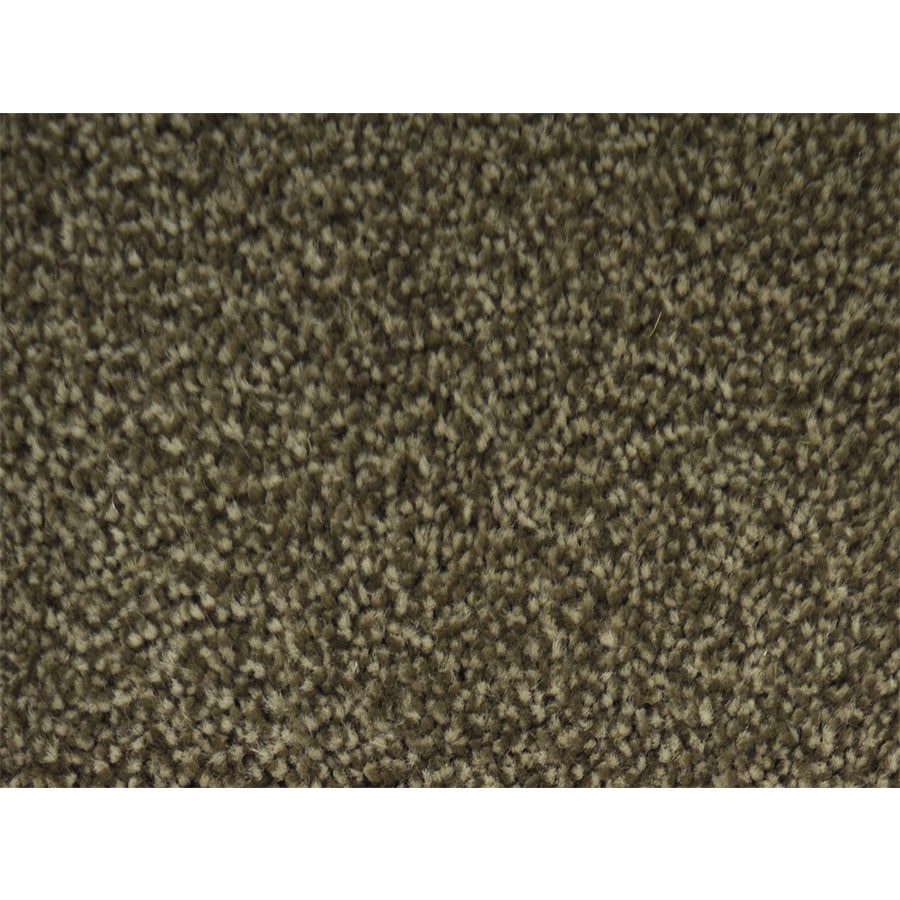STAINMASTER Best In Show PetProtect Green Plush Carpet Sample