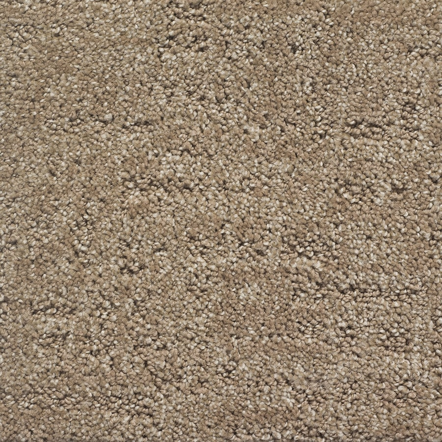STAINMASTER PetProtect Duke Clifford Berber/Loop Carpet Sample