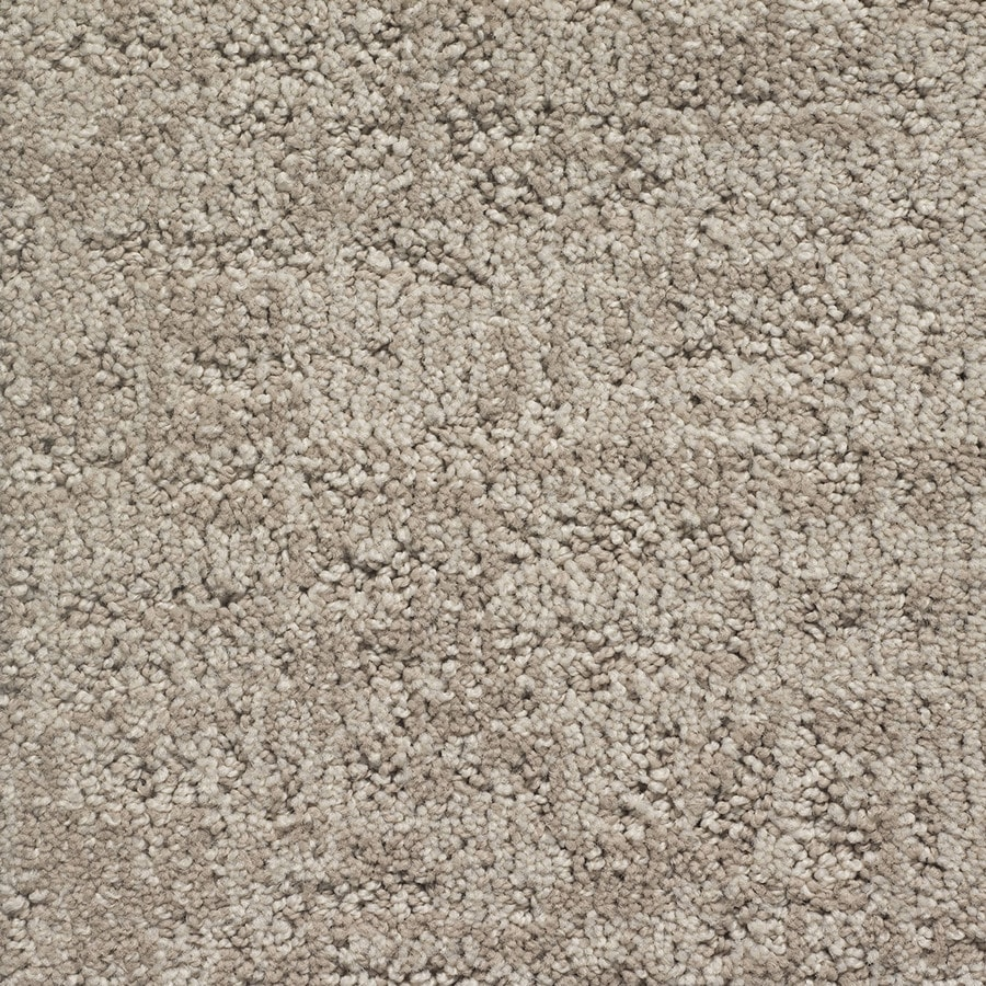 STAINMASTER PetProtect Duke Toto Berber/Loop Carpet Sample