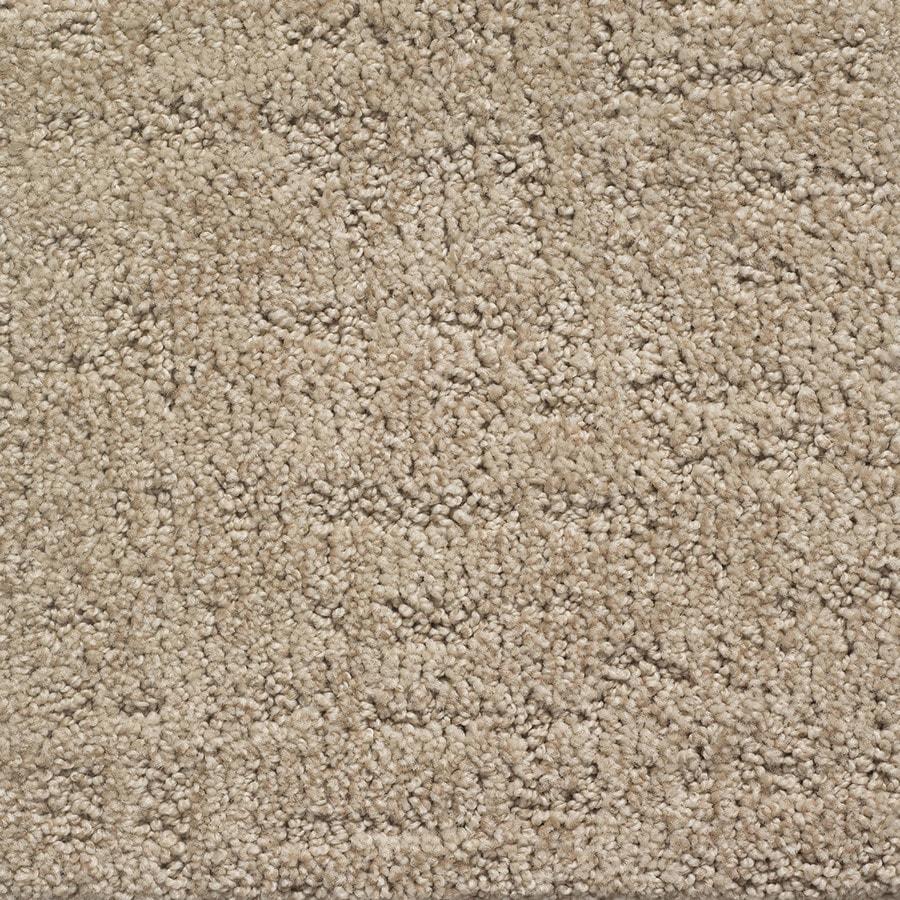 STAINMASTER PetProtect Duke Spot Berber/Loop Carpet Sample