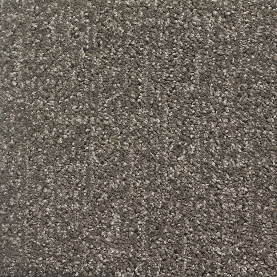 STAINMASTER PetProtect Duchess Cujo Berber/Loop Carpet Sample