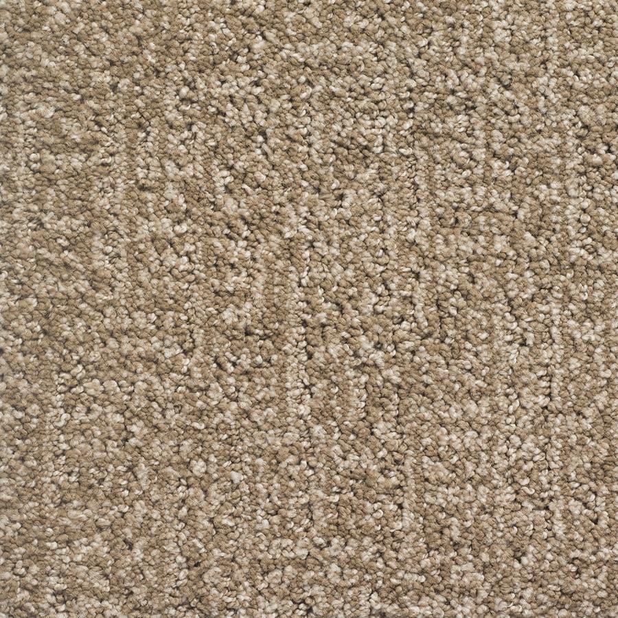 STAINMASTER PetProtect Duchess Rover Berber/Loop Carpet Sample