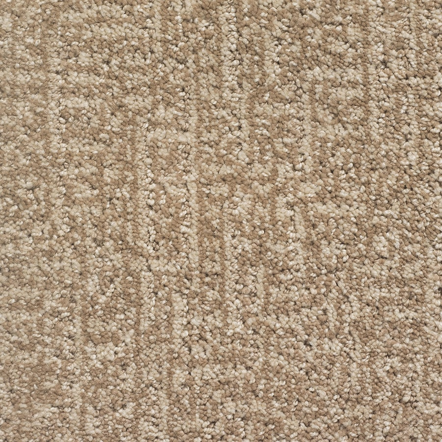 STAINMASTER PetProtect Duchess Lassie Berber/Loop Carpet Sample