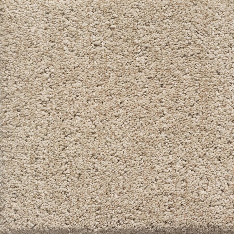 STAINMASTER PetProtect Duchess Spot Berber/Loop Carpet Sample
