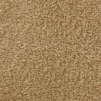 Stainmaster Petprotect Magnetic Ay Carpet Sample