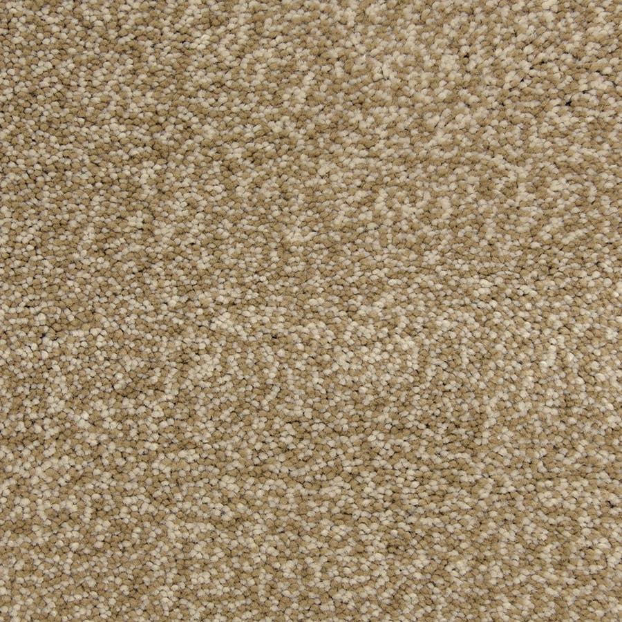 STAINMASTER PetProtect Magnetic Storm Carpet Sample