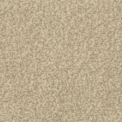 Stainmaster Petprotect Magnetic Cobblestone Carpet Sample At