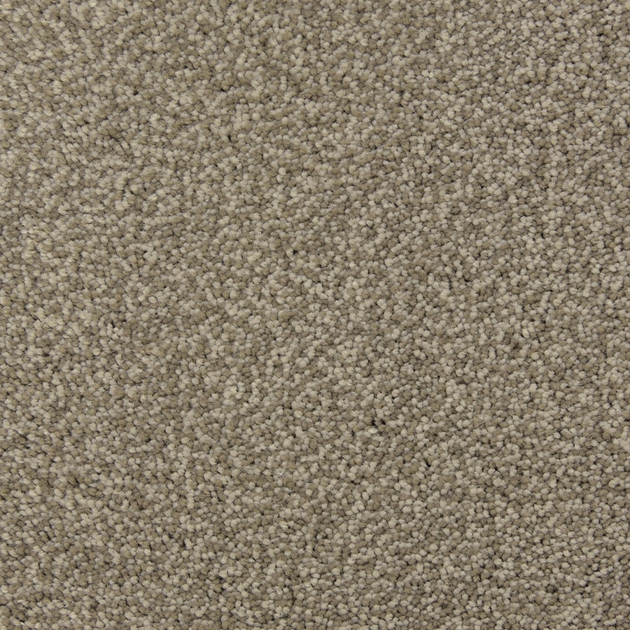 STAINMASTER PetProtect Magnetic Limestone Carpet Sample