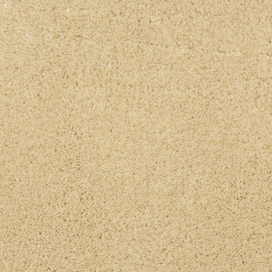 STAINMASTER PetProtect Entranced Cream Carpet Sample