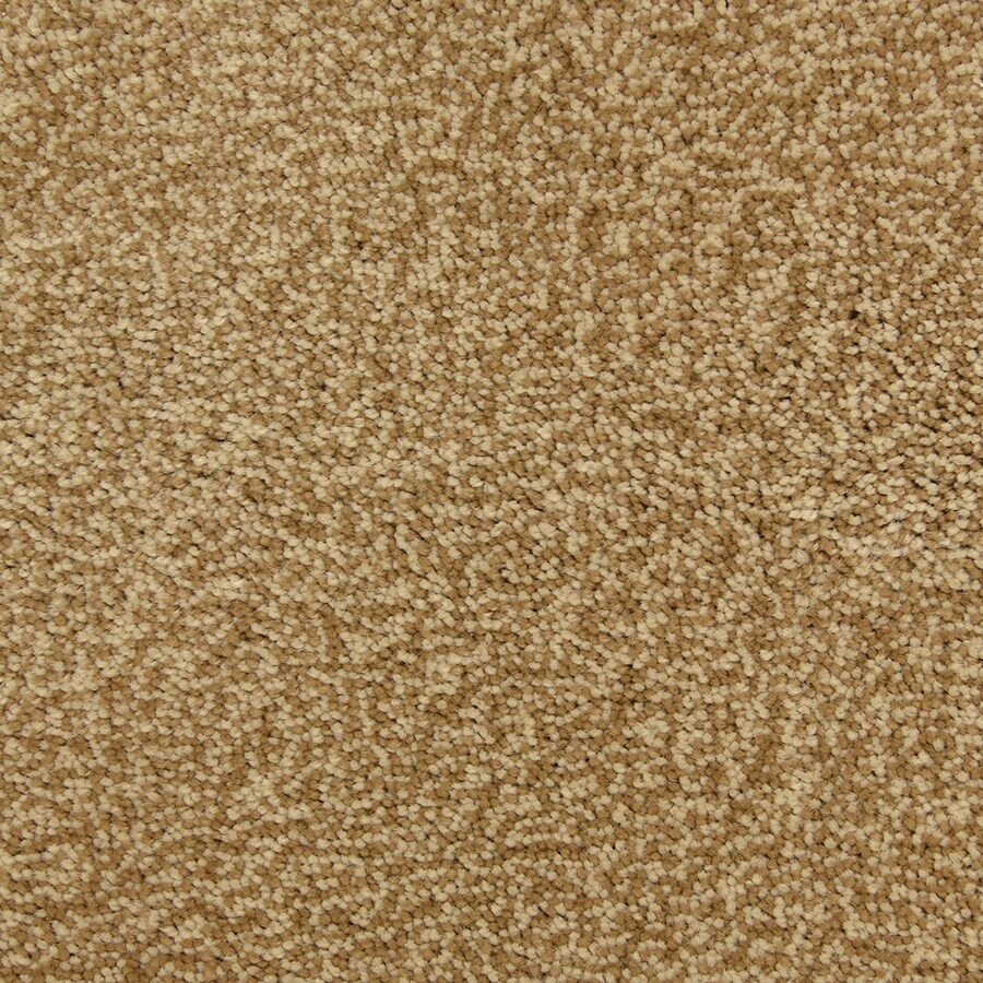 STAINMASTER PetProtect Entranced Bombay Carpet Sample