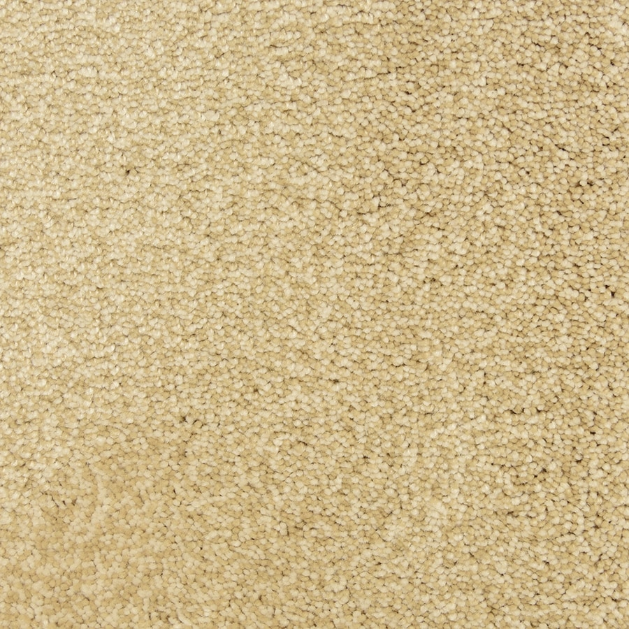 STAINMASTER PetProtect Entranced Cotton Carpet Sample