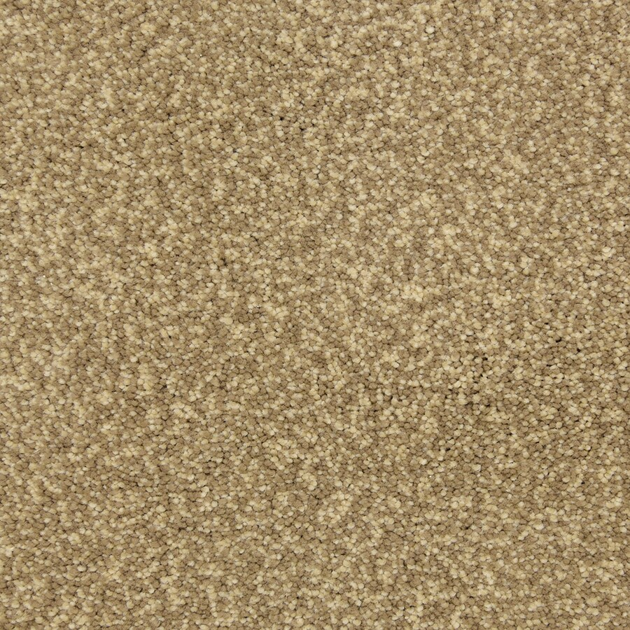 STAINMASTER PetProtect Entranced Sandbar Carpet Sample