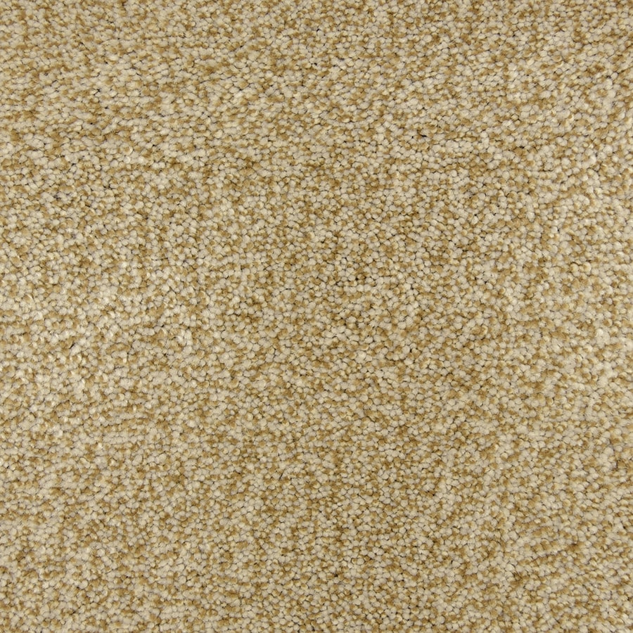 STAINMASTER PetProtect Entranced Fossil Carpet Sample