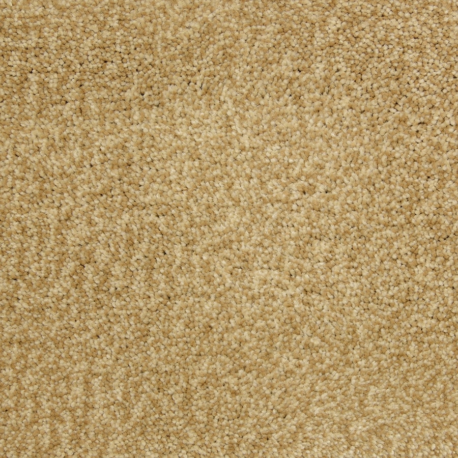 STAINMASTER PetProtect Hypnotized Heirloom Shag/Frieze Carpet Sample