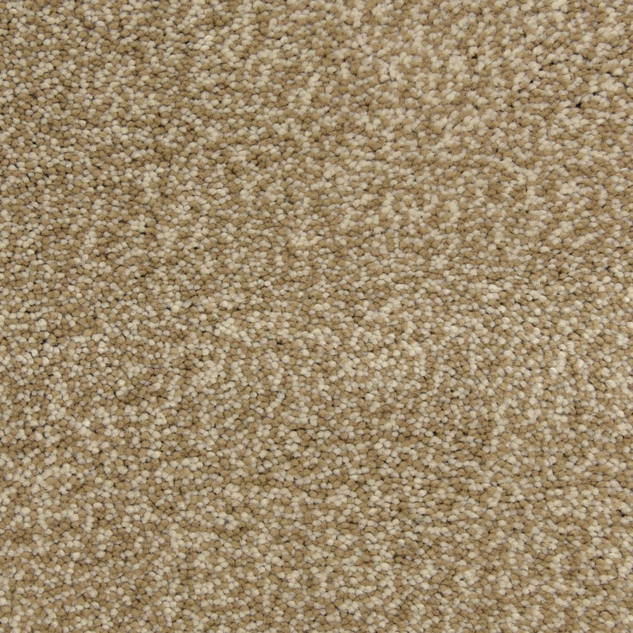 STAINMASTER PetProtect Hypnotized Storm Carpet Sample