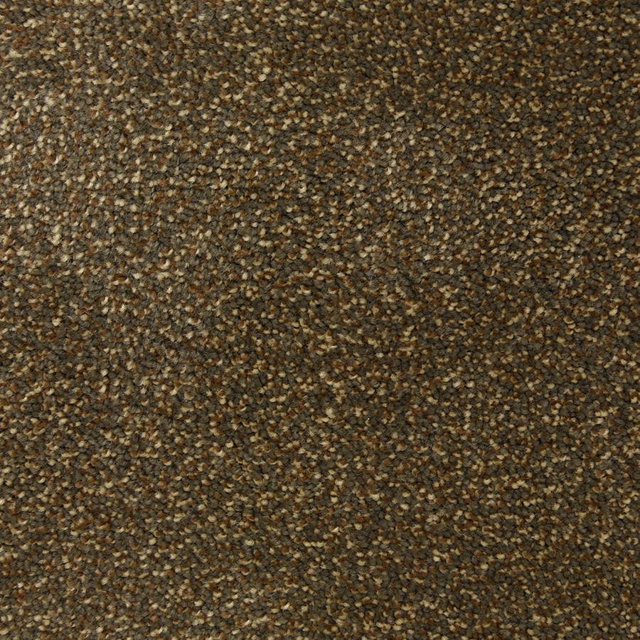 STAINMASTER PetProtect Hypnotized Sable Carpet Sample