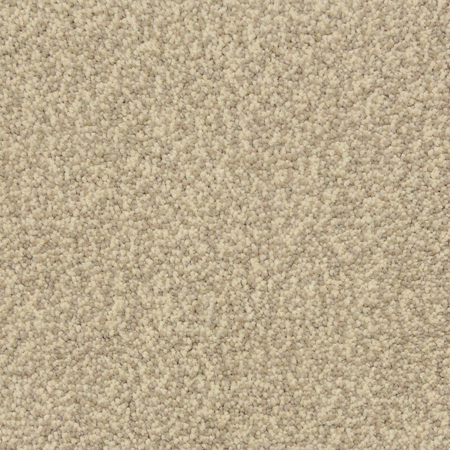 STAINMASTER PetProtect Hypnotized Cobblestone Carpet Sample