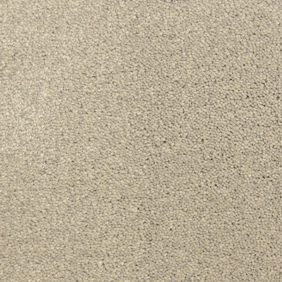 STAINMASTER PetProtect Hypnotized Pagoda Carpet Sample