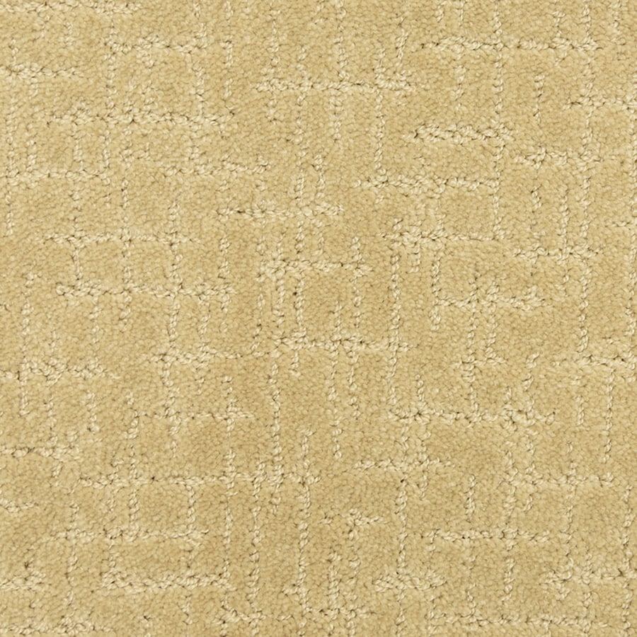 STAINMASTER PetProtect Charmed Abstract Carpet Sample