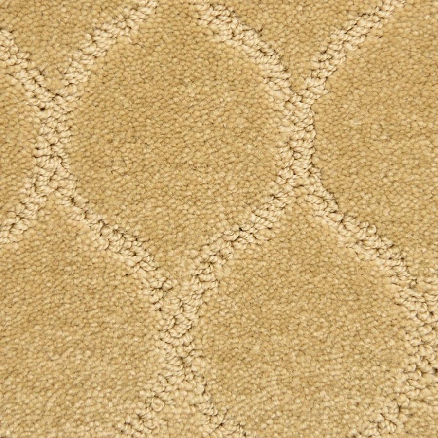 STAINMASTER PetProtect Iconic Magic Carpet Sample