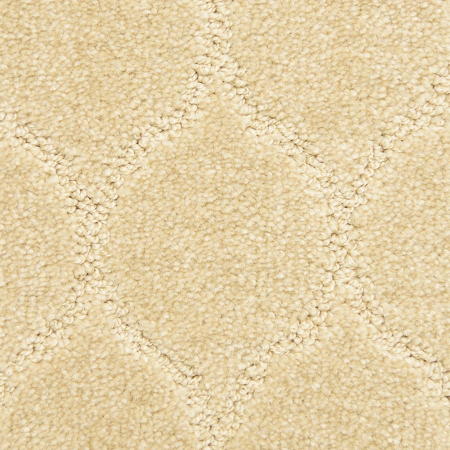 STAINMASTER PetProtect Iconic Fancy Carpet Sample