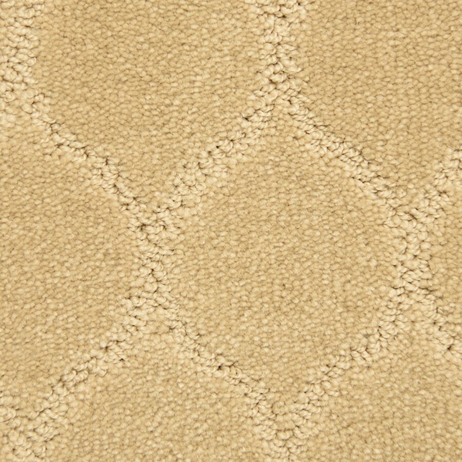 STAINMASTER PetProtect Iconic Thoughtful Carpet Sample