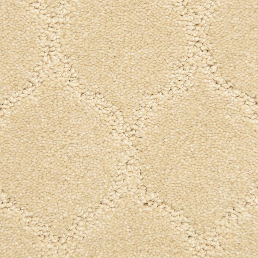 STAINMASTER PetProtect Iconic Secret Carpet Sample