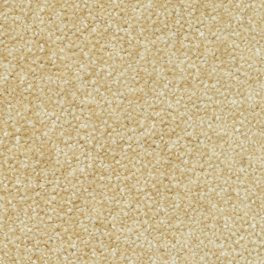 STAINMASTER PetProtect Day Trip Aromatherapy Carpet Sample