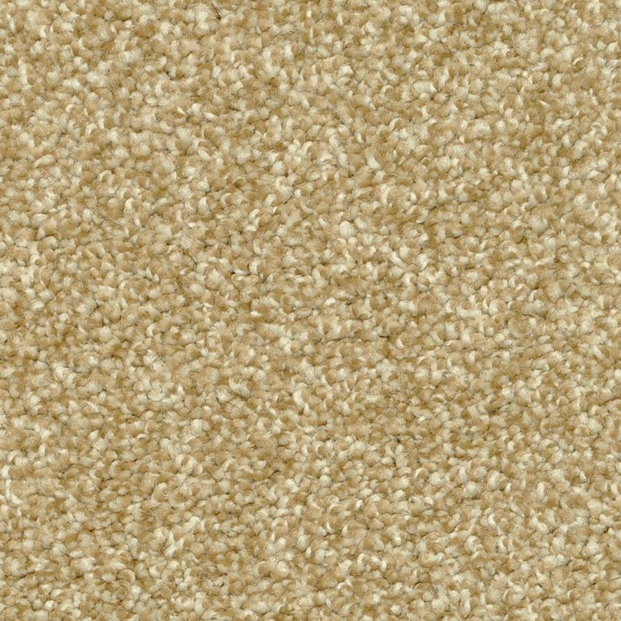 STAINMASTER PetProtect Day Trip 603 Carpet Sample