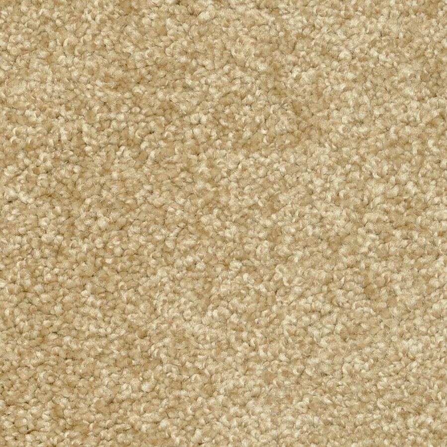 STAINMASTER PetProtect Day Trip Rejuvinate Carpet Sample