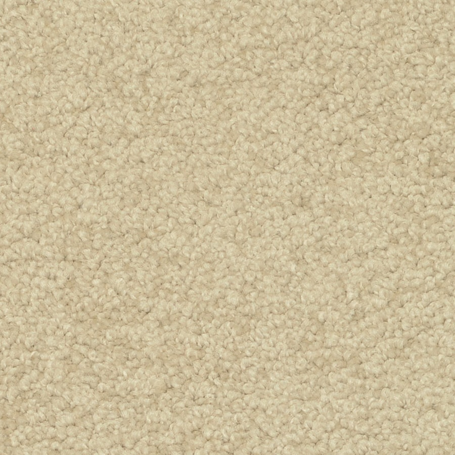 STAINMASTER PetProtect Day Trip Tranquil Carpet Sample