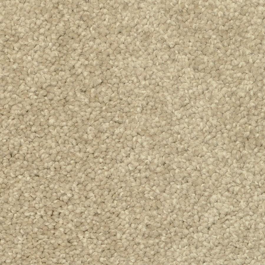 STAINMASTER PetProtect Day Trip Hot Stones Carpet Sample